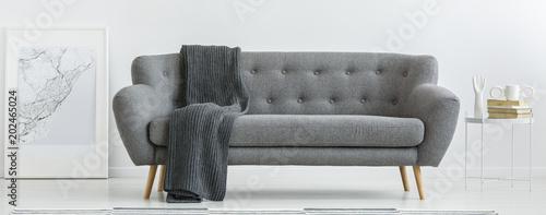 Fotografie, Obraz  Grey couch with blanket