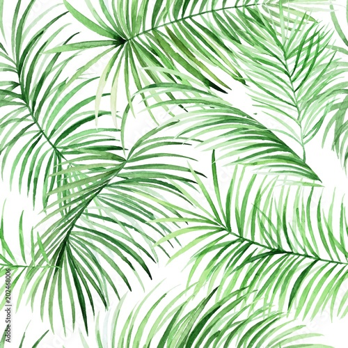 Watercolor Palm Leaves Pattern In Vector Tropical Packground For Your Design
