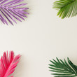 canvas print picture - Creative layout made of colorful tropical leaves on white background. Minimal summer exotic concept with copy space. Border arrangement.