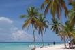 Dominican republic summer beach travel