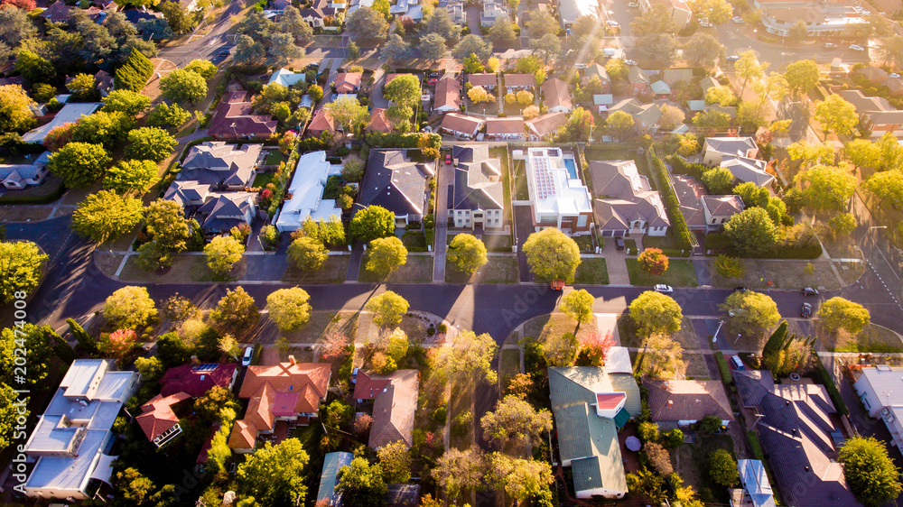 Fototapety, obrazy: Aerial view of a green leafy suburb