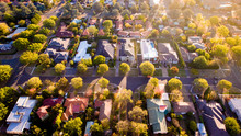 Aerial View Of A Green Leafy S...