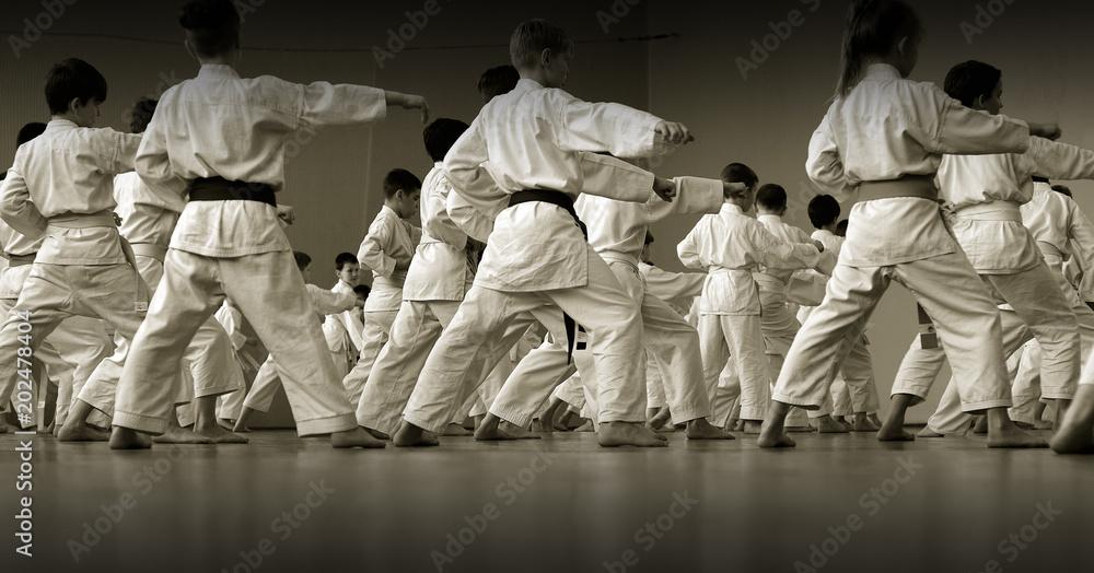 Szkolenie dzieci na temat karate-do. Baner z miejscem na tekst. Do stron internetowych lub drukowania reklam. Zdjęcie bez twarzy, od tyłu. <span>plik: #202478404   autor: Uladzimir</span>