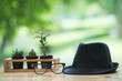 Black hat with black glasses put on a wooden with green background.Holidays concept