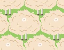 Hairy Sheep Flock Seamless Pat...