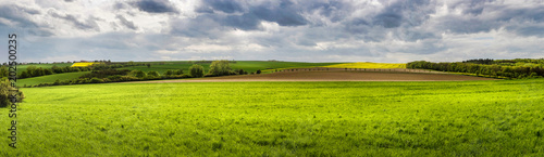 Panoramic view of spring landscape with green meadows