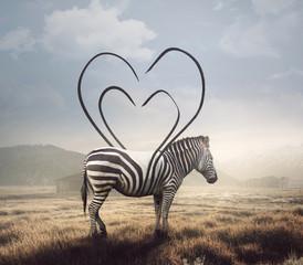 Fototapeta Abstrakcja Zebra and heart stripes