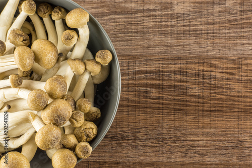 Fényképezés  Brown beech mushrooms Shimeji in a grey bowl top view isolated on wooden background
