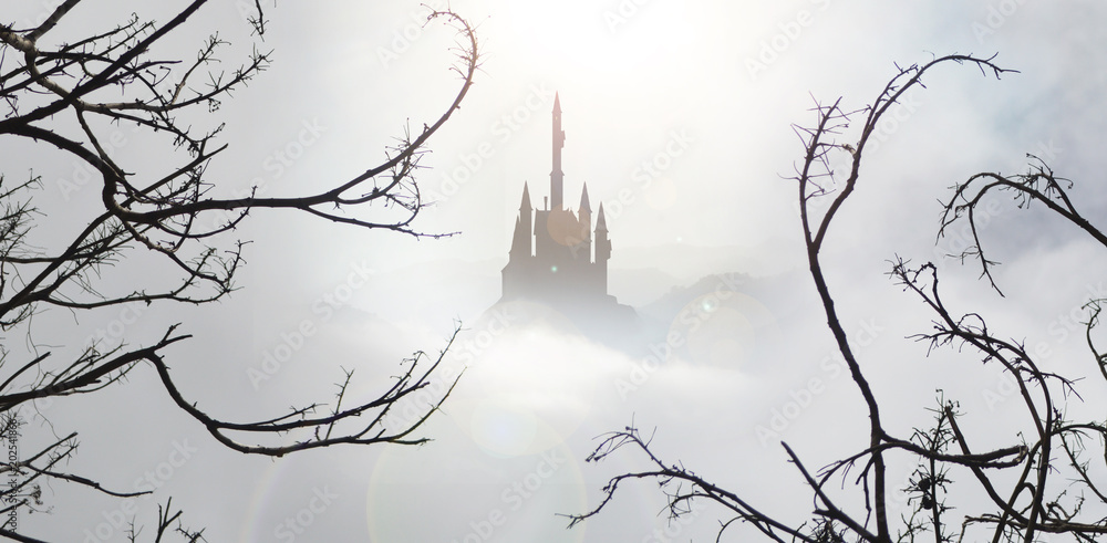 Fototapeta fairytale castle in mist from spooky wood