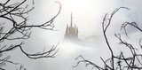 fairytale castle in mist from spooky wood