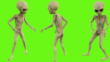 Alien Look Around On Green Screen
