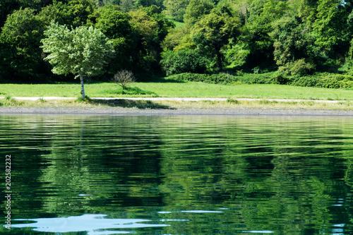 Poster Nature spiaggia lago di Bolsena