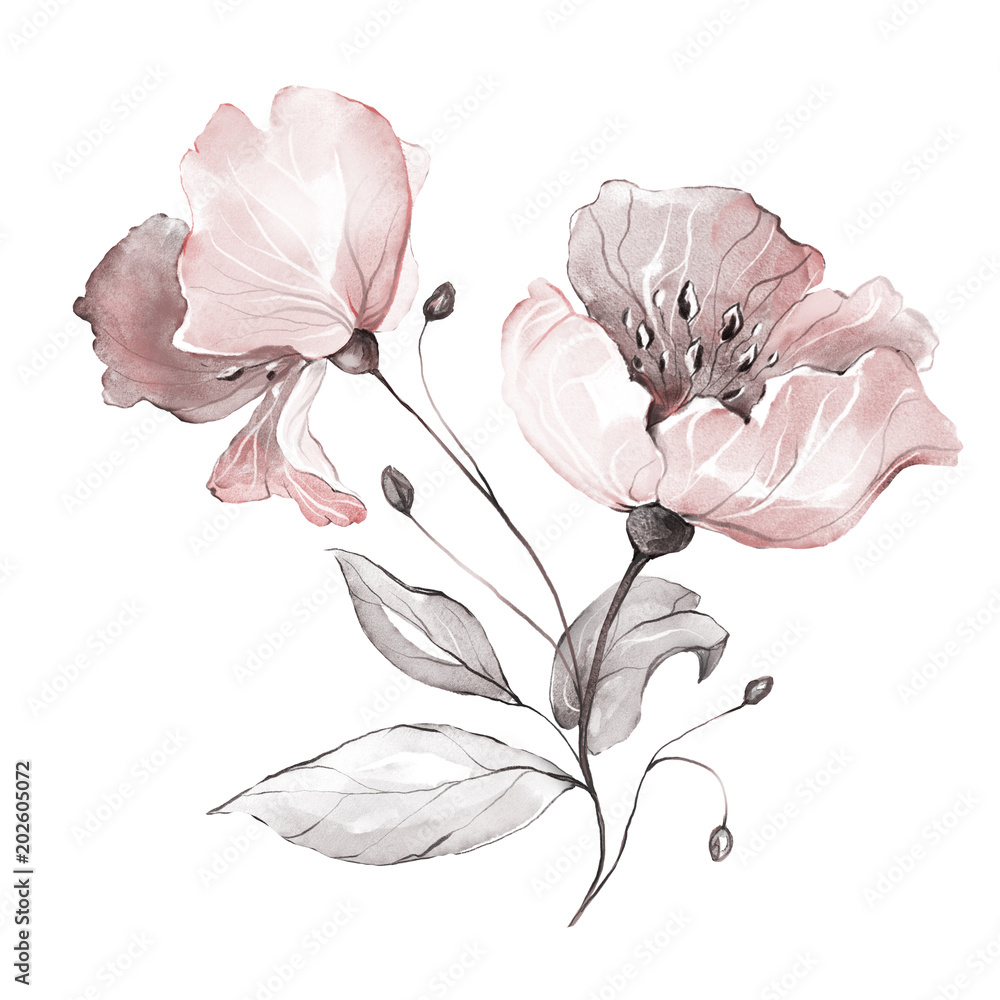 decorative watercolor flowers. floral illustration, Leaf and buds. Botanic composition.  branch of flowers - abstraction roses, romantic