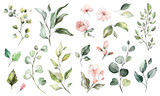 Fototapeta Kwiaty - Big Set watercolor elements - wildflowers, herbs, leaf. collection garden and wild, forest herb, flowers, branches.  illustration isolated on white background, exotic  leaf. Botanic