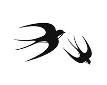 Swallow Logo. Isolated Swallow...