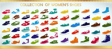 Collection Of Fashion Women Shoes On White Background