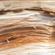 Imitation Wood Texture