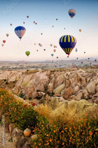 Hot air balloon flying over rock landscape at Cappadocia Turkey Wall mural