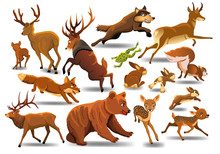 Vector Set Of Wild Forest Anim...