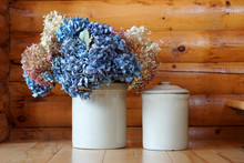 Two White Pots Of Blue And Whi...