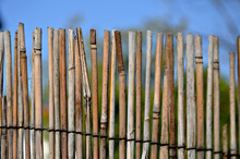 A Fence Made Of Twigs In The Garden