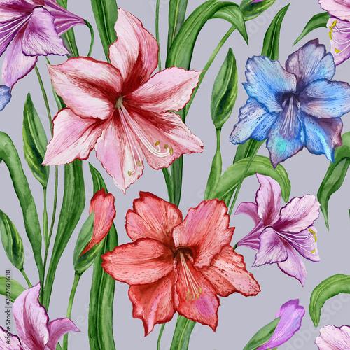 Piękni kolorowi amaryllis kwiaty z zielonymi liśćmi na popielatym tle. Wiosna bez szwu wzór. Malarstwo akwarelowe. Ręcznie malowane kwiatowy ilustracji.