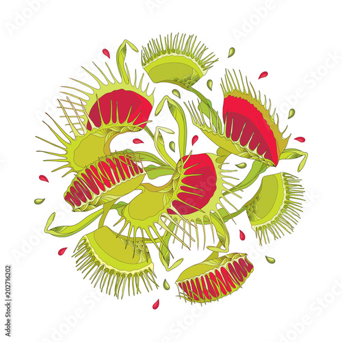 Carta da parati Vector round composition of Venus Flytrap or Dionaea muscipula in red and green isolated on white background