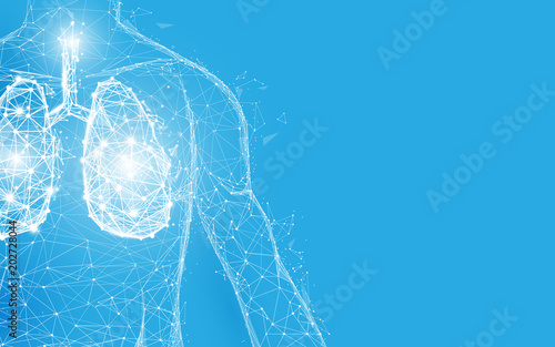 Fototapety, obrazy: Human lungs anatomy form lines and triangles, point connecting network on blue background. Illustration vector