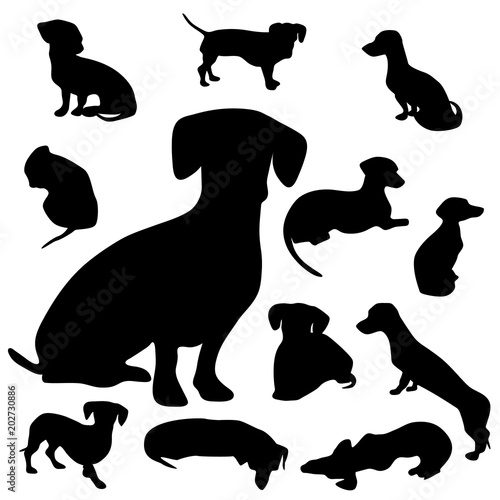 Dachshund Silhouette Collection