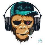 Fototapeta Młodzieżowe - Music fan hipster monkey in headphone. DJ chimpanzee