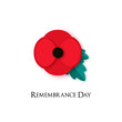 Poppy flower Illustration for Remembrance Day. Poppy for Armistice day. Banner for Anzac or Victory in Europe. Vector card template.