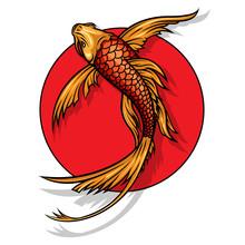 Gold Koi Carp On Red Sun Vecto...
