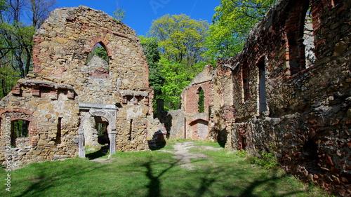 Poster Rudnes Ruiny Starego Książa w Książęcym parku krajobrazowym