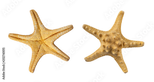 Photo Set of two sides of a beige starfish, isolated on a white background (design ele