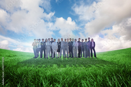 Business people standing up against green field under blue sky