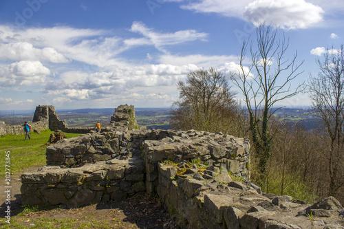 Foto op Aluminium Rudnes Ruins of the Löwenburg in Siebengebirge next to Bonn