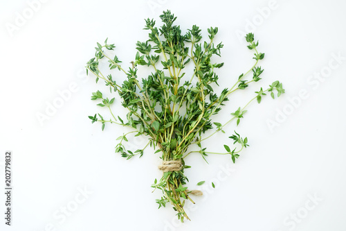 Bouquet of fresh thyme twigs on white background with copy space Billede på lærred