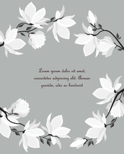 Vector Illustration Branches With Floral Decoration. Spring Magnolia. Background With White Flowers