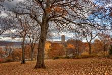 Fall At Fort Tryon Park - Cloi...