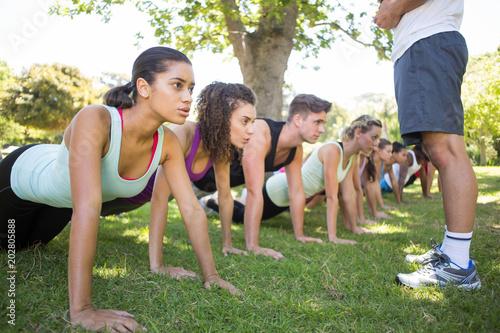 Fotografie, Obraz  Fitness group planking in park
