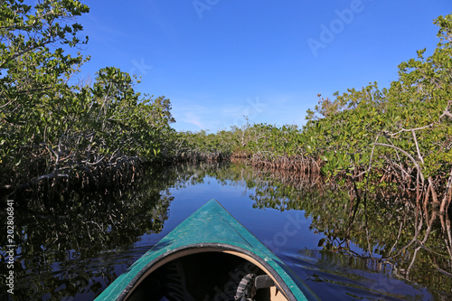 Fotografija A kayak moving through the mangroves of Everglades National Park, Florida reflecting in a waterway of Hell's bay trail