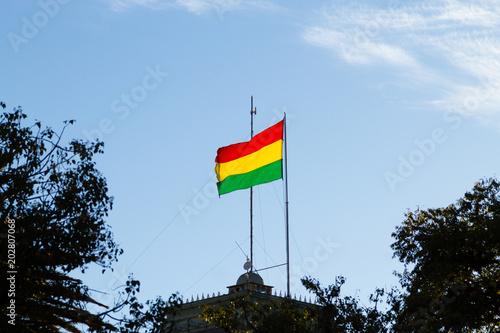 Bolivian flag, Bolivia Canvas Print