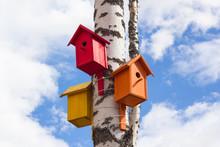 Closeup Of Birdhouses On A Bir...