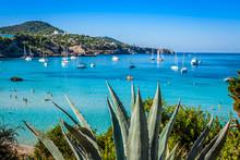 Cala Tarida In Ibiza Beach San...