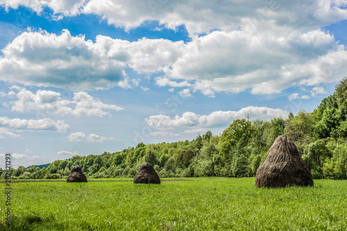 Foto op Aluminium Bleke violet a stack of hay in green field in village and summer nature landscape with forest on background