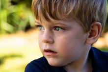 Little Boy With Dreamy Eyes