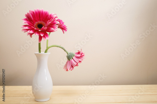 Tuinposter Gerbera Gerbera flowers in a white vase on a wood table