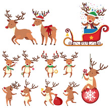 Reindeer In Different Action O...