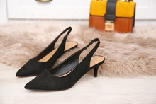 Pair Of Elegant Female Shoes O...