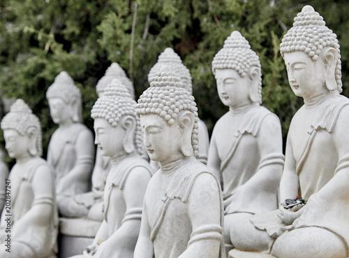 Vászonkép Buddhist Statues